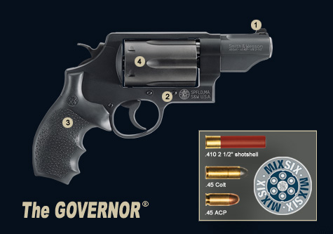 S&W Governor Switch Six
