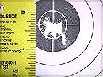 This is a 10 shot group from my Ruger 10/22 shot with Eley Practice 100 at 60 yards on 10/08/02.10/22 60 yard groupJohn Will