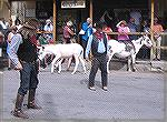 Street shootout in Oatman, Arizona.  The show depicts a confrontation between the Farley clan and the Granger clan (Farley...Granger, get it?) over a supposedly rustled pig.  The Grangers swore they d