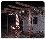 From an e-mail.  Are these Kim's or TJ's Christmas decorations?